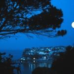 Peschici di notte